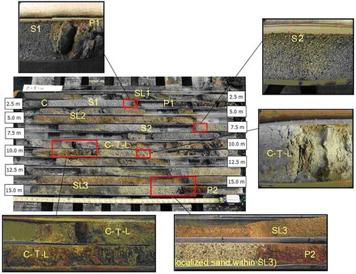 One of extracted typical core at the site. Small pictures show changes of lithofacies along the core (SL1, sandy loam; C, clay; S1, predominantly sand; P1, paleosol hardpan; SL2, sandy loam with intercalations; S2, sand; C-T-L, clayey, silty and loamy material; SL3, sandy loam to fine sandy loam; P2, paleosol hardpan).