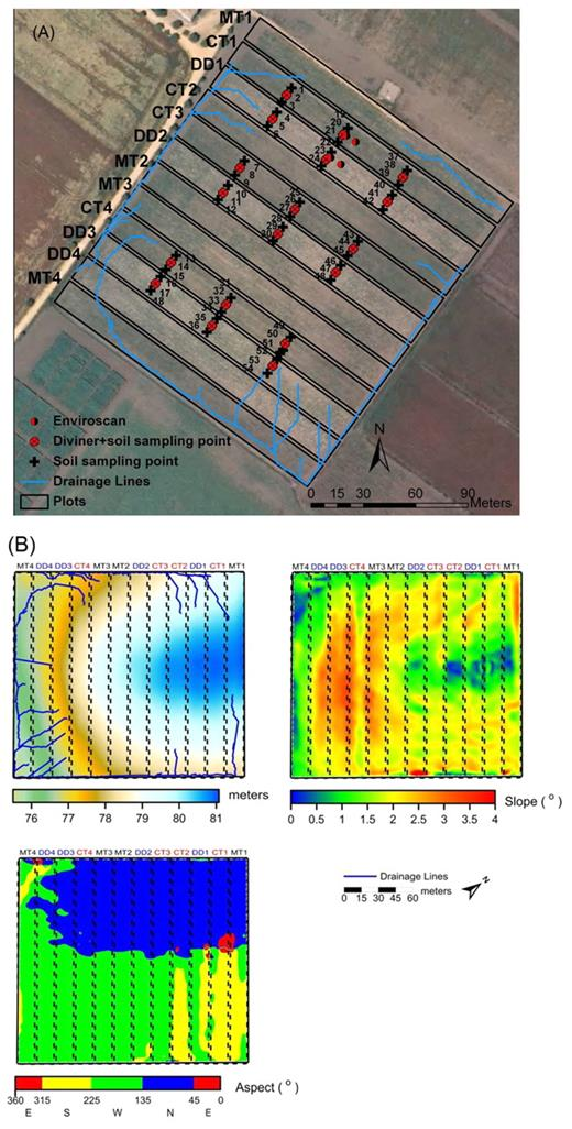 (A) Map of the field with superposed plot limits, drainage network, location of 54 gravimetric soil sampling locations, four Enviroscan multisensory capacitance probes, and 18 Diviner single-sensor capacitance probe access tubes (MT, minimum tillage; CT, conventional tillage; DD, direct drilling); and (B) topographical maps of (from left to right) topography, slope, and aspect with superposed plot limits and drainage lines.