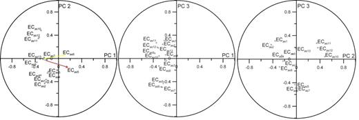 Circles of correlation, showing the projections of the 13 shallow apparent electrical conductivity (ECas) surveys on the planes defined by the first three principal components (PCs).