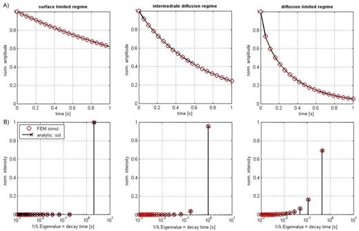 Model validation of numerical simulations (finite element method [FEM]) of NMR relaxation in (A) time and (B) eigenvalue domains with analytical solutions (crosses) for a single saturated spherical pore of radius R = 40 μm (diffusion coefficient of water D = 2.5 × 10−9 m2/s) in fast (surface relaxivity ρs = 1 μm/s), intermediate (ρs = 15 μm/s), and diffusion-limited regimes (ρs = 75 μm/s).