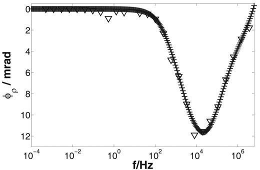 Phase spectra (dependence of the resistivity phase ϕρ on the frequency f) for frequency-dependent calculation for the enhanced Marshall–Madden model using Eq. [17], [18], and [19] (crosses) and time-dependent calculation using Eq. [10], [11], and [12] (triangles). The phase behavior is in good agreement. The frequency-dependent calculation shows less numerical fluctuation and made it possible to increase the number of data points with less computing time.