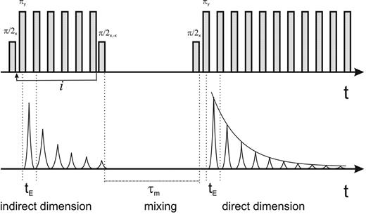 Two-dimensional transverse relaxation–relaxation (T2– T2) exchange pulse sequence: tE is the echo time, which is kept fixed, and τm is the mixing time, which extends the exchange time. The index i counts the 180° pulses in the indirect dimension. It is varied logarithmically in such a way that for maximum i, the evolution time in the indirect dimension is equal to the detection time in the direct dimension.