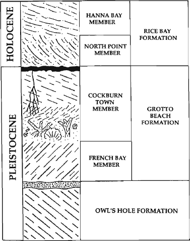 Quaternary Carbonate Eolianites   Modern and Ancient