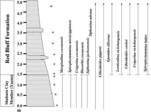 Chronostratigraphy | Geologic Problem Solving with