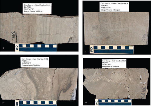 Regional assessment of co2 geological sequestration potential a mud cracked and alga laminated dolomudstone in the bass islands dolomite fandeluxe Images