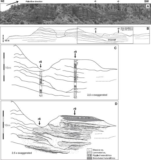 —A) Oblique oriented 2-D photomosaic and B) bedding diagram of distal bars; for location see Figure 1, Area 3; legend is the same as in Figure 8. Numbers along the top of the photomosaic indicate the locations of the vertical measured sections.(C) Measured sections and D) mapped facies through distal bars; for location see Figure 1, Area 3 and Part A; legend is the same as in Figure 8.
