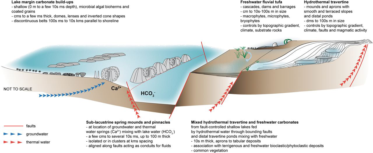 Introduction | Microbial Carbonates in Space and TimeImplications ...