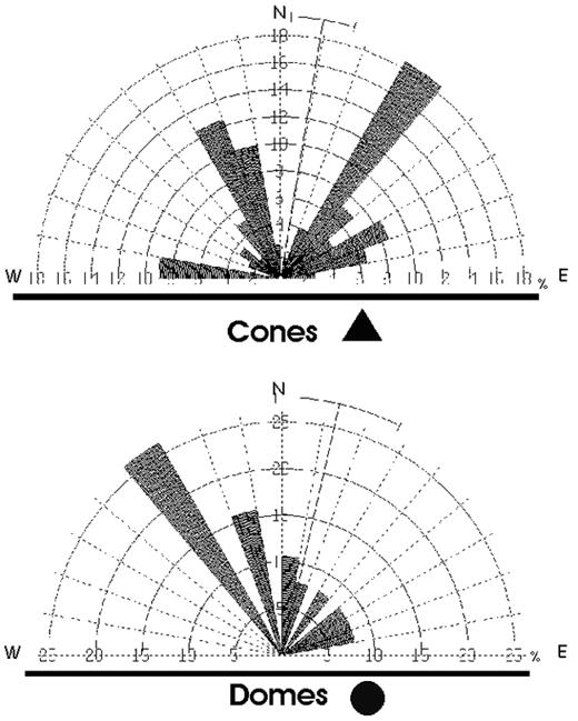 Figure 9. Rose plots of alignments of cones and domes of the Valle de Bravo Volcanic Field. A least three aligned structures are needed for an alignment.