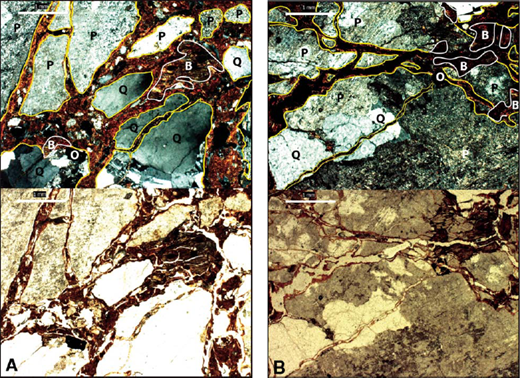 Thin sections from 50 cm and 150 cm in profile shown in Figure 7. Bottom half in transmitted light, top half in crosspolarized light. P—plagioclase, Q—quartz, B—biotite, O—opaque. Note clay groundmass in fractures in quartz grains in particular, at both depths.