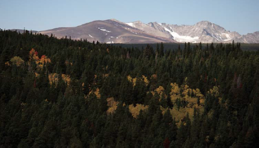 View west from upper Gordon Gulch. The Arapaho Glacier is visible between the summits of South and North Arapaho peaks on the Continental Divide. Tundra-covered Caribou ridge along the left skyline separates the North Boulder Creek headwaters (including Green Lakes valley) on the right from the Middle Boulder Creek headwaters (including Fourth of July valley) on the left. Niwot Ridge, the location of the Niwot Long Term Ecological Research (LTER) site, is the next major east-trending ridge north of this view (photo taken 2 Oct 2008 by S.P. Anderson).