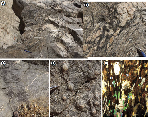 (A) Migmatitic biotite schist at Stop 6 with leucosome (sub-)parallel to the main foliation. (B) Close-up view of A) highlighting the biotite selvage around the leucosome. (C) Leucosome cross-cutting the foliation. (D) Sillimanite nodule. (E) Photomicrograph of sillimanite (Sil) nodule with biotite (Bt), quartz and K-feldspar. Although rare, relic of muscovite (Ms) is locally observed. Field of view is 4.4 mm.