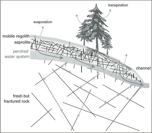 Conceptual picture of water flowpaths, illustrating importance of a perched water system above relatively impermeable bedrock. The deep system is dominated by flow in fractures.