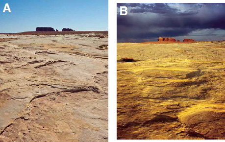 Images shot at noon, with direct overhead sunlight (A), show less detail than images shot in morning or evening when the sun's angle is low, and small features are revealed by shadows (B). Photos: Steve Weaver.