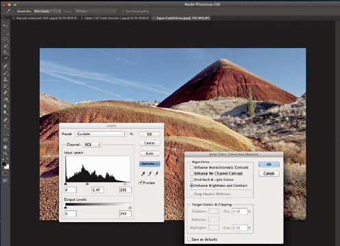 Checking the histogram in Photoshop or Lightroom can provide clues about your image quality. The histogram should occupy the entire baseline of the graph. Use left and right sliders to adjust your image to use all its data, and improve image quality.