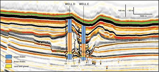 Seismic cross section with research wells D and E, drilled into the axis and levee of Einstein channel. Well data from Hackbarth and Shew (1994). Location of cross section is shown in Figure 4. Seismic data courtesy of CGG Veritas.