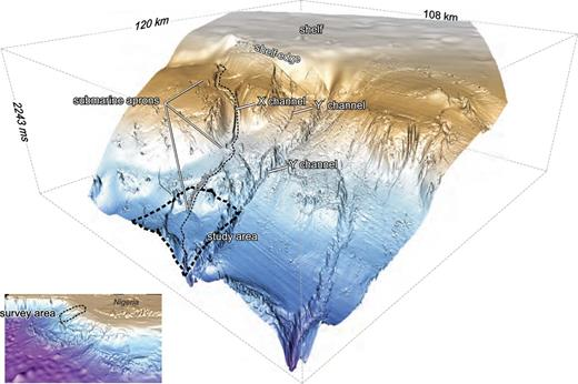 Perspective view of Niger Delta slope, showing typical shale-based above-grade slope with curvilinear shale-cored ridges and adjacent plunging syncline lows. Zoomed seafloor image comes from the survey area indicated in lower left inset. Study area is outlined by dashed line with OML 134 block. Line of section shown in Fig. 5 follows the X channel.
