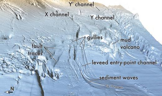 Perspective view of the entry channel showing the locations of splays and associated channels or gullies that incise levees lateral to the entry-point channel.
