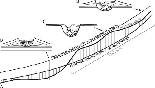 """A) Schematic showing a stepped pre-incision slope with alternating higher-gradient ramps and lower-gradient steps. Given enough time and enough flows, erosion along the base of a canyon may achieve a graded profile (dashed line) on an otherwise """"bumpy"""" slope if the rate of incision is faster than the rate of substrate deformation. A hypothetical graded profile develops along a canyon axis during incision, but a corresponding """"depositional"""" graded profile may also develop contemporaneously outside the canyon during slope apron buildup that smooths over gradient changes. The difference between the two reflects, in part, the dominant behavior of flows traveling along the canyon axis and on the adjacent slope (see Kneller, 2003). On slowly deforming slopes like in the study area, where depositional and erosional processes dominate short-term slope evolution along active sediment-transport corridors, the broad-scale architecture of canyon–channel–levee systems depends strongly on location relative to the pre-incision slope morphology. Thicker overbank deposits and lower incision depths, B) may develop at the down-flow transition from steeper ramps to shallow steps. Conversely, thinner overbank deposits and deeper incision depths, C) may develop at the down-flow transition from steps to ramps that form convex-upward """"bumps"""" on the pre-incision slope. These positive-relief features are preferentially eroded during early incision. In areas where the hypothetical canyon-thalweg graded profile is elevated above the pre-incision slope, D) the resulting deposits may be dominated by aggradational channel–levee systems that experience common avulsions and compensational stacking."""