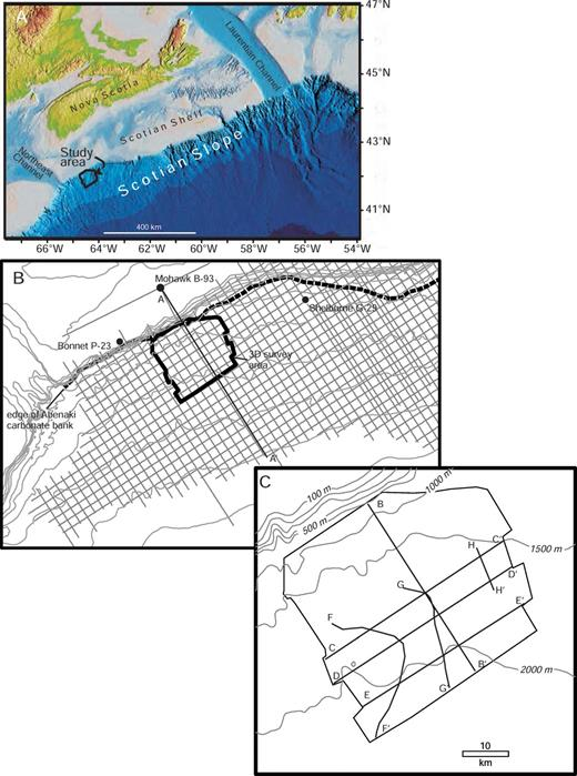 Location maps of study area. A) Regional map of the geomorphology of the continental margin off Nova Scotia. (Modified from Shaw and Courtney, 2004). B) Location map of the continental margin off western Nova Scotia, Canada, showing coverage of 2D and 3D seismic reflection data, the buried edge of the Abenaki carbonate bank, and the location of cross section A–A′. C) Location map of study area showing position of various seismic profiles discussed in the text.