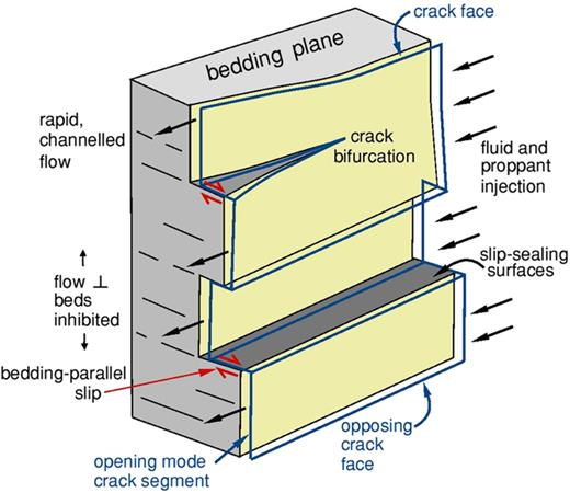Schematic showing the geometry of an experimentally produced hydraulic fracture such as shown in Figure 12. Crack bifurcation leads to formation of bedding-parallel shear mode offsets of opening-mode segments, that seal against vertical fluid flow and help entrain proppant along the dilatant crack channels.