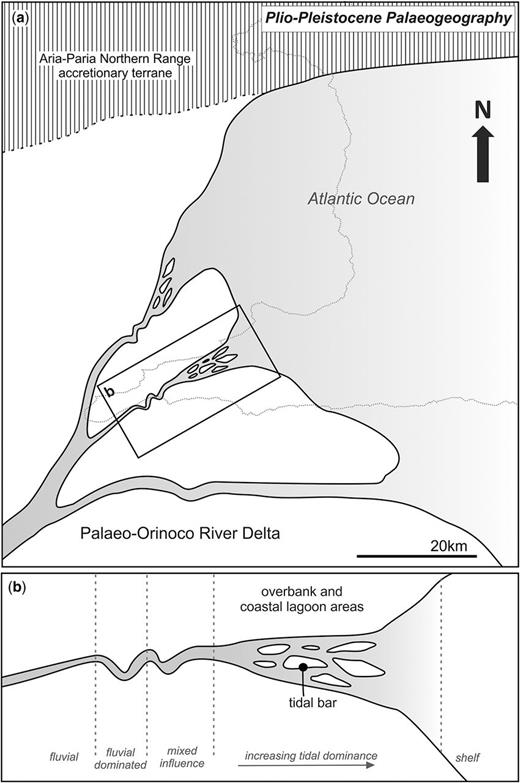 (a) Plio-Pleistocene palaeogeography of the eastward extent of the Eastern Venezuelan Basin during deposition of the Erin Formation. Outline of the current location of Trinidad included. (b) Palaeoenvironment of the outcrop deposits studied.