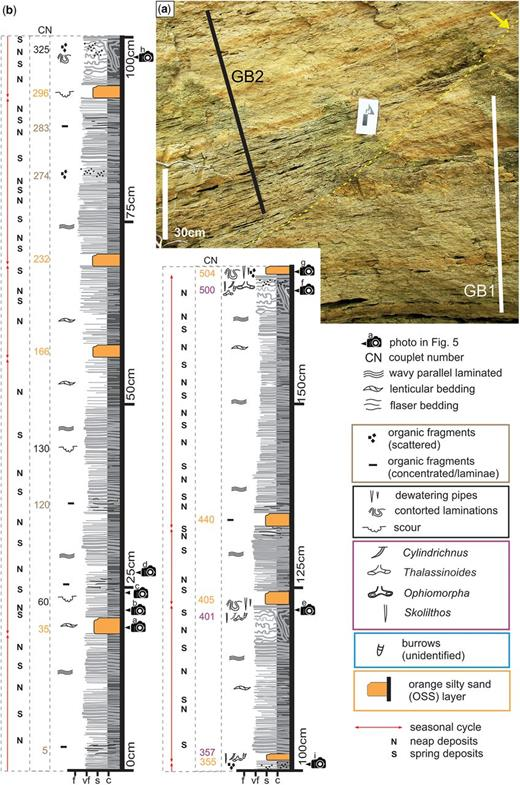(a) Photograph showing the scoured surface separating subsections GB1 and GB2. (b) Sedimentary log of subsection GB1 with interpreted cycles. Couplet numbers corresponding to sedimentary features of interest are listed in the column CN. Locations of photographs through the section are also shown.