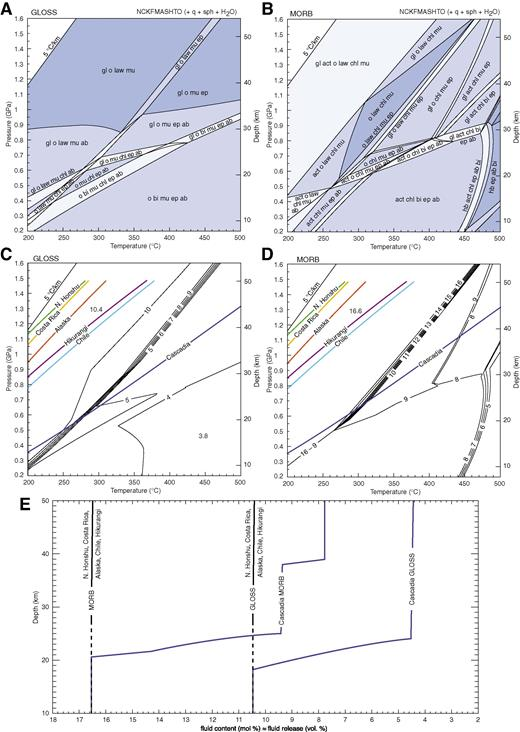 (A, B) Calculated pseudosections for the mineral composition of (A) global subducting sediment (GLOSS) and (B) mid-ocean-ridge basalt (MORB). (C, D) Calculated fluid content, corresponding to the volume of fluid released from (C) GLOSS and (D) MORB during progressive metamorphism. The subduction zone geotherms described in Figure 4A are overlain on these. (E) Fluid content and cumulative fluid released from GLOSS and MORB along each of the geotherms shown in C and D. Mineral abbreviations are: ab—albite; act—actinolite; bi—biotite; chl—chlorite; ep—epidote; gl—glaucophane; hb—hornblende; law—lawsonite; mu—muscovite; o—omphacite; q—quartz; sph—titanite.