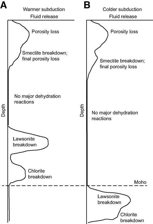 Schematic representation of fluid release against depth for (A) warm and (B) cold subduction zones. Cascadia would be an example of a warm subduction zone, whereas northern Japan is the end-member example of cold subduction zones. Clearly, these are end members, and transitional behaviors are likely. Figure is based on models shown in Figures 6 and 7.