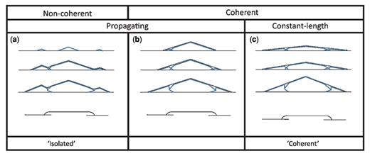 Displacement–length profiles illustrating three potential growth histories leading to the same fault map pattern. The solid lines are the displacement profiles for individual faults and the dashed lines are profiles of aggregate displacement. The three cases are distinguished on the basis of whether the faults are coherent and whether the faults propagate continuously as displacement increases. The non-coherent propagating case is commonly referred to as the 'isolated' model and the constant-length coherent case is commonly referred to as the 'coherent' model. The propagating coherent case is also possible, but is less commonly invoked. The evolution of the fault traces for parts (a) and (c) are illustrated in Figure 2. The profiles shown are for normal faults in map view, but similar considerations are equally applicable to faults in cross-section.