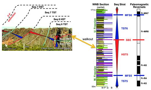 —Walkout correlation between the Classic Face in Windjana Gorge and the WNB measured section (interpretation and age context for Classic Face after Playford et al. 2009, Playton and Kerans 2015a). Coarse stratigraphic context extrapolated from Classic Face to WNB was sufficient to calibrate Middle vs. Upper Frasnian intervals and to correlate reversals into conodont-constrained slope sections. See Figure 2 and Appendix 1 for sequence architecture and measured section legend, respectively. See Figure 6 for reversal chart. Seq = sequence; SB = sequence boundary; MFS = maximum flooding surface; TST = transgressive systems tract; HST = highstand systems tract; F-F = Frasnian-Famennian; W = wackestone; P = packstone; G = grainstone; B = boundstone.