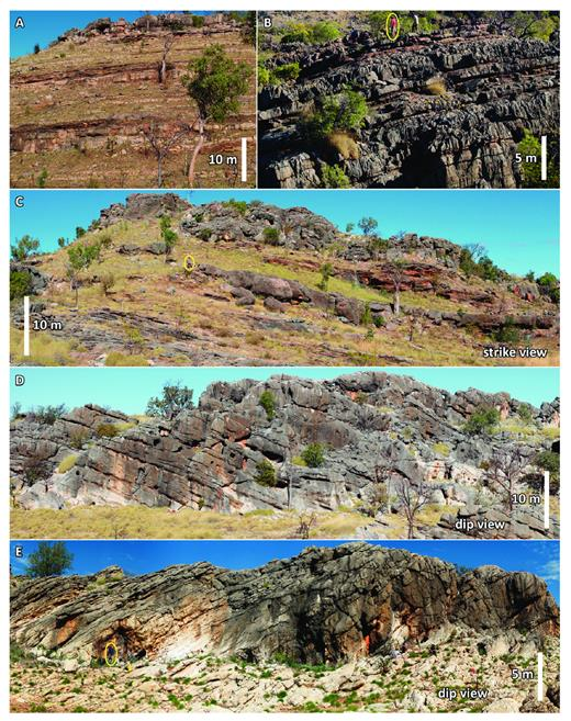 —Examples of CBCP outcrop localities (after Playton et al. 2013). A) Frasnian inner platform cycles of the Windjana North B Section (WNB). B) Frasnian reef-flat cycles of the Windjana North A Section (WNA). C) Frasnian middle- to upper-slope strata of the Windjana Slope Section (WS). D) Frasnian middle-slope strata of the South Oscars Section (SO). E) Famennian upper-slope strata of the Casey Falls Section (CL). Yellow circles indicate people for scale. See Figure 1 for locations along the Lennard Shelf.