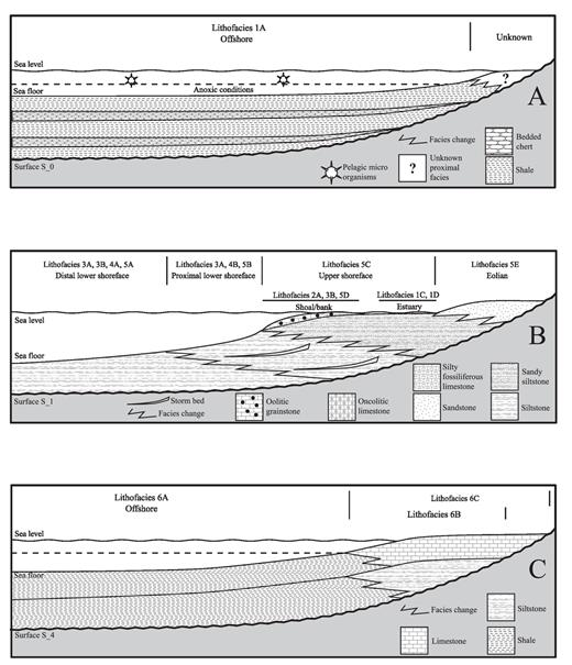 —Depositional models. These figure illustrate the succession of lithofacies and depositional environments for A) sequence 1, B) sequence 2, C) sequence 3.