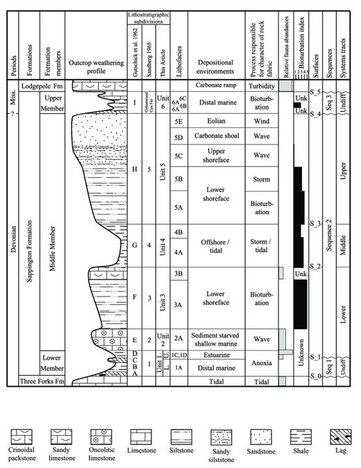 —Sappington Formation stratigraphic chart with stratigraphic nomenclature, stratigraphic column, lithostratigraphic nomenclature (historical and proposed), lithofacies, depositional environments, dominant depositional processes, relative macrofauna abundances, bioturbation intensity index (BI), surfaces, sequences, and systems tracts.