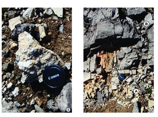 —The WD1.5 exposure surface, Mt. MacKenzie, East Spur. a) Caliche at the WD1.5 surface with bleached packstone to grainstone of the uppermost WD1.4 penetrated by dissolution vugs filled with greenish argillaceous mudstone. b) Laminated dolosiltstone (B) and cryptalgal laminated mudstone (A) overlying the soil illustrated in Figure 7a. (Photos by D. Mans.)