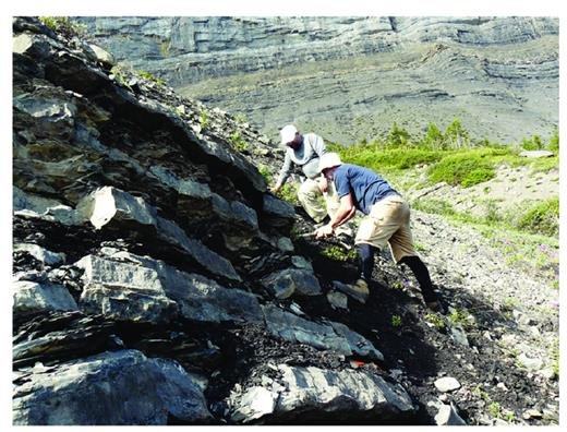 "—Interbedded euxinic shale and mudstone of the Duvernay Formation, deposited during the WD3 HFS. Note, on the slope in the background, Ireton Formation basin fill with the rusty-weathering ""silt doublet"" (base WI2.1) near the top. The Famennian Wabamun Group forms the cliff at the uppermost part of the photo."