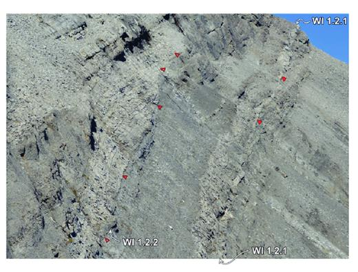 —WI1 ramp margin geometries, southeast flank of Mt. Berry, Nikanassin Range. The solid triangles mark the facies change from foreslope grainstone and packstone into reef margin boundstone of the upper WI1.1 (see Fig. 16c). The WI1.2.1 cycle set occurs immediately above, capping the reef margin boundstone, indicated by the white arrows. The open triangles above indicate the base of the WI1.2.2 cycle set, with onlapping/downlapping package of peloidal–skeletal packstones immediately above. These are interpreted as bypassed foreslope sands oriented shelf-parallel (striking out of the plane of the outcrop).