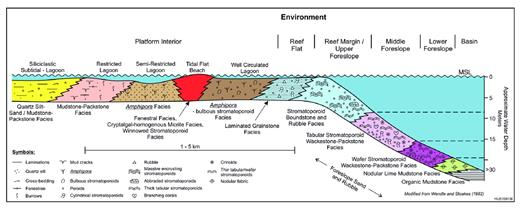 —Depositional model for Frasnian reefal carbonate platform margins, Alberta (modified from Wendte and Stoakes 1982).