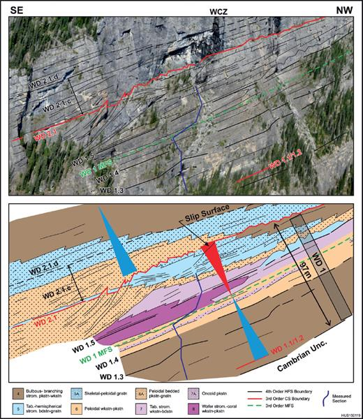 —Outcrop photograph and interpreted overlay of the WD1 CS showing systems tracts, component HFSs, cycle sets, stratal stacking patterns, lithofacies, ravinement truncation, and transgressive lag of stromatoporoid grainstone above the WD2.1 sequence boundary (extreme left). Note change in stratal patterns, from subhorizontal and aggradational to progradational, across the WD1 MFS. North side of Wapiabi Creek, box 1 in Figure 9.