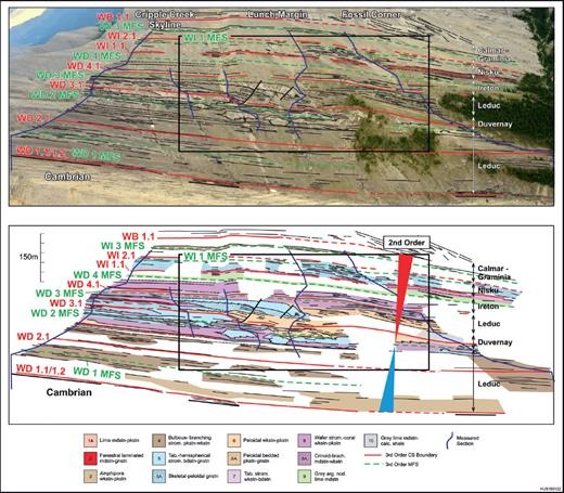—Frasnian second-order supersequence (late TST to late HST) at the Cripple Creek area, from Cripple Creek Skyline (left) to Fossil Corner (right) locations. The WD2 MFS (= supersequence MFS) marks the turnaround from aggradation to progradation. This surface can be traced from foreslope branching coral wackestone–packstone (left) into the high TOC lime mudstone and shale of the Duvernay Formation (right). The WB1.1 sequence boundary coincides approximately with the Frasnian–Famennian boundary.
