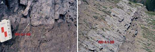 —A) Sharp WD4.1 sequence boundary separating foreslope skeletal grainstone (b) from lower foreslope branching coral packstone and wackestone (a), Cripple Creek Skyline. First fenestral cryptalgal laminite is 1 m above this surface and not shown. B) Upper foreslope skeletal grainstone (b) overlying and separated from lower foreslope branching coral packstone and wackestone (a) by the WD4.1 sequence boundary, 100 m northeast (basinward) of the Lunch Margin location.