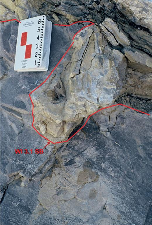 —WI3.1 CS boundary at Cripple Creek Skyline. A karst surface is developed over slightly dolomitized laminated lime mudstone. Thinly interbedded dolomitic siltstone and lime mudstone drape the small karst sinkhole. A quartz siltstone filled karst pipe is located below sinkhole. Scale in inches.