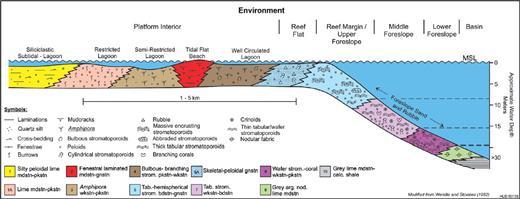 —Depositional model for Frasnian reefal carbonate platform margins, Alberta.