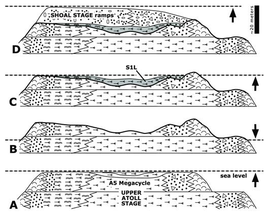 —Schematic diagrams illustrating the development of paleotopography on the ISHU at Carson Creek North. A) Deposition and highstand lagoon fill at the end of the upper atoll stage A5 megacycle. B) sea-level fall and denudation/erosion to form the ISHU. C) Subsequent sea-level rise and deposition of the S1L unit, with facies and environments controlled by ISHU paleotopography. D) Continued transgression and deposition of shoal stage high-energy ramp cycles.