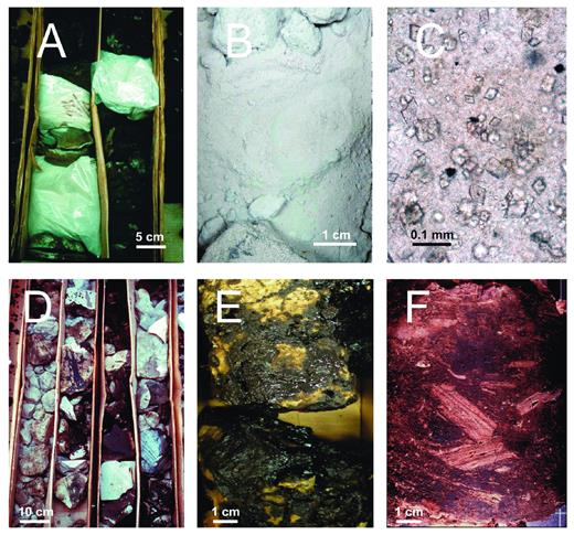 —Images of powdered dolomite (A–C) and breccias (D–F). A) Core interval with dolomite powder held together by bitumen. Bags contain white dolomite powder after bitumen extraction with organic solvent. B) Dolomite powder. C) Thin section, transmitted light: dolomite crystals floating in bedded anhydrite. This kind of rock is a possible, if not the most likely, precursor of dolomite powder in the Grosmont reservoir. The sample is from Nisku anhydrites in southeastern Alberta (Machel 1985). No such rocks or textures were found in the Grosmont reservoir. D–F) Fractured and brecciated core intervals due to evaporite dissolution. Samples are from well 7-29-84-18W4M, UGM2, 356.0 m, with the exception of C, which is from the overlying Nisku Formation from well 14-9-35-20W4, 1622.5 m.