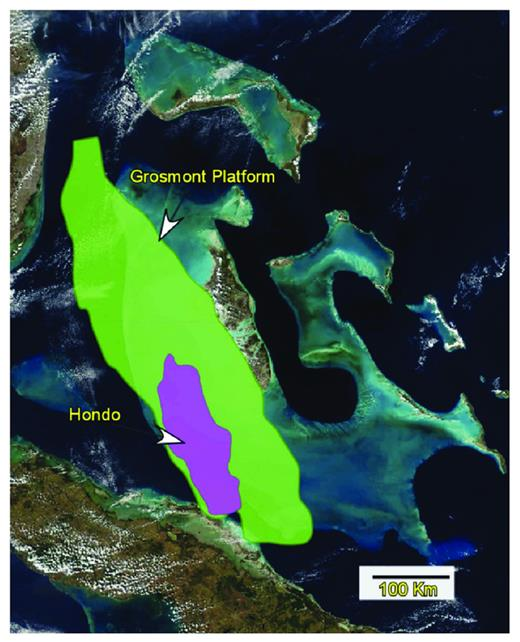 —The Great Bahama Bank represents a modern analog, with regard to size, to the Grosmont platform, including the depositional region of the Hondo. Photograph taken from www. maps.google.ca.