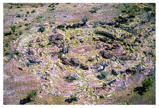 —Aerial view looking north over the southwest culmination of Elimberrie No. 2 bioherm. The width of the field of view is about 130 m.