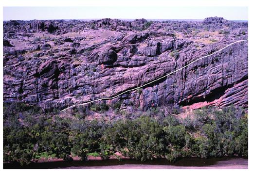—The Frasnian-Famennian boundary, marked by a white line, in marginal-slope deposits (Napier Formation) in the eastern part of Windjana Gorge, on its south side. The Frasnian deposits on the right are generally well bedded, whereas the Famennian deposits on the left are poorly bedded and marked by many allochthonous blocks of reef limestone. Note the undulating bedding, probably stromatolitic, above the boundary.