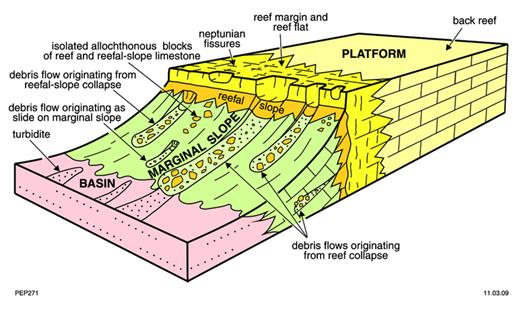 —Block diagram illustrating the morphology of the reef complexes and relationships between platform, marginal-slope, and basin facies.