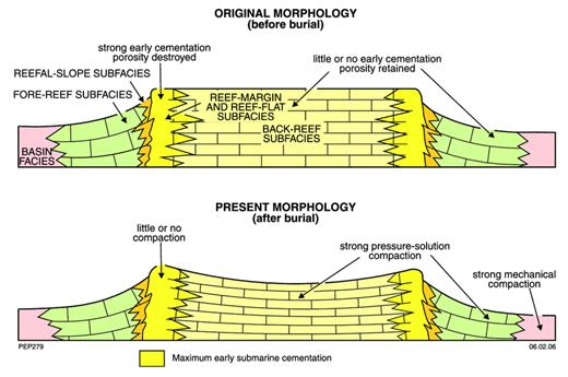 —Diagram to illustrate changes in the morphology of the Devonian limestone platforms, resulting from pressure-solution compaction after burial.