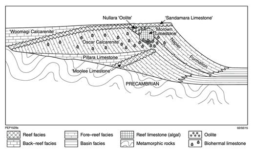 —Cross section through the northern side of the Oscar Range reef complex near its western end, after Smith et al. (1957, Plate 9).